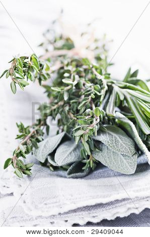 Frish Herbs