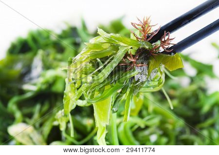 Fresh seaweed salad