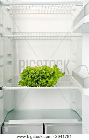 Salad Bunch