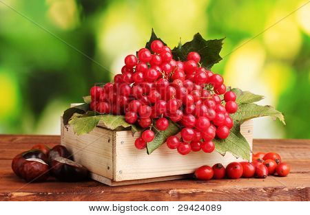 viburnum in wooden box, chestnuts and briar on wooden table on green background