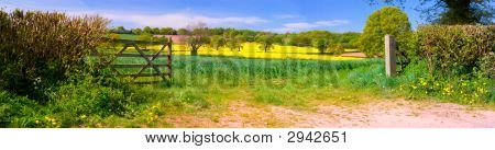 Panorama Of English Countryside
