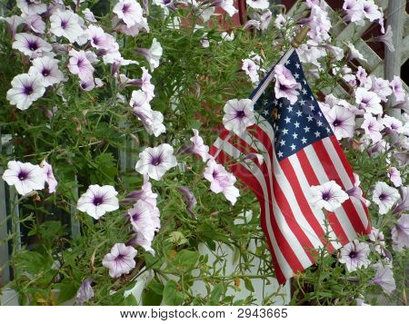Flag And Flowers