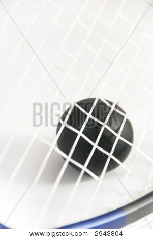 Squash Ball Against Strings Of Racket