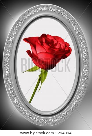 Red Rose And Oval Frame 07