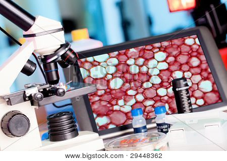 Bio Laboratory Workplace  genetic research