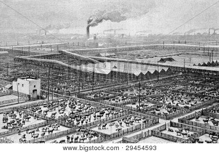 """Central slaughterhouse in Chicago. Engraving by Maynar from picture by painter Taylor. Published in magazine """"Niva"""", publishing house A.F. Marx, St. Petersburg, Russia, 1893"""