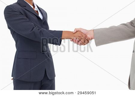 Side view of hands shaking against a white background