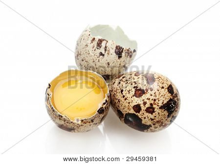 quail eggs isilated on white