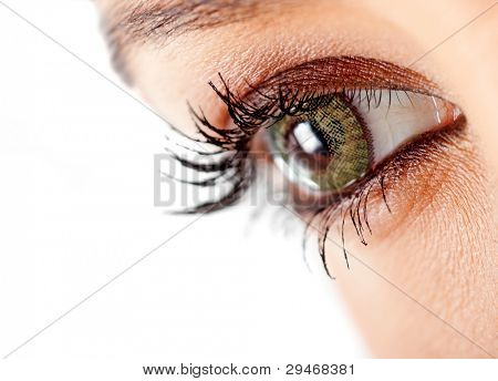 Close up of a female eye with green contact lenses - isolated over a white background