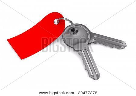 Isolated two keys on white background. 3D image