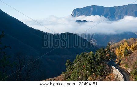 Mountain peaks. Tree. Clouds - was taken in Hubei, China