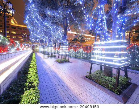 Dekoration von Bäumen in der Nacht