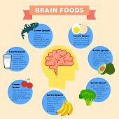 A Vector Illustration Of Brain Foods Infographic. Brain Food Vector Flat Infographic. Vector Flat Ca poster