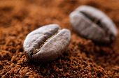 stock photo of coffee grounds  - Coffee Bean - JPG