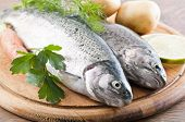 foto of aromatic  - Rainbow Trout - JPG