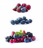 Berries Isolated On White Background. Ripe Blueberries, Wild Strawberries, Raspberries, Currants, Mu poster