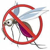 stock photo of mosquito  - STOP Mosquito - JPG