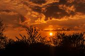 Dark Orange Sunset Sky With Dramatic Clouds, Silhouettes Of Trees And Vegetation In Foreground, Natu poster