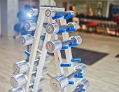 Rows Of Dumbbells In The Gym. Dumbbell Set. Many Metal Dumbbells On Rack In Sport Fitness Center poster