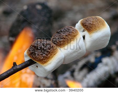 Marshmallows Roasting On A Open Fire