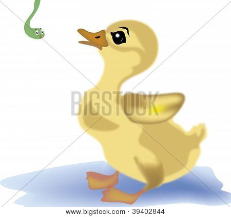 vector duckling
