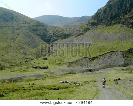 Lone Walker In Lake District,a Classic Rural Scene