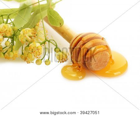 drizzler with sweet honey and linden flowers isolated on white