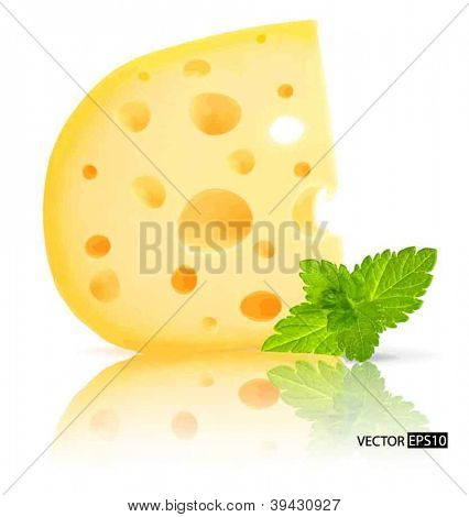 Vector piece of cheese with holes and mint leaf isolated on white background.