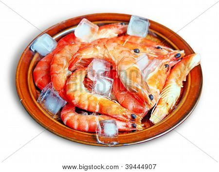 Fresh Red Shrimps With Ice On The Plate