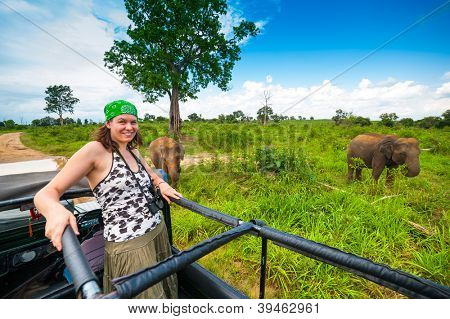 Young woman in a safari jeep in Sri Lanka met a group of elephants