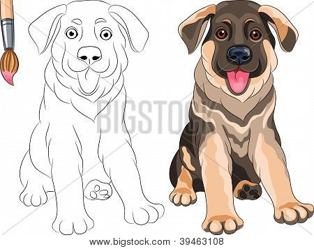 vector Coloring Book Of Puppy Shepherd