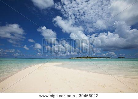 Maldives safari