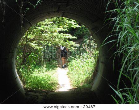 Walker Through Tunnel