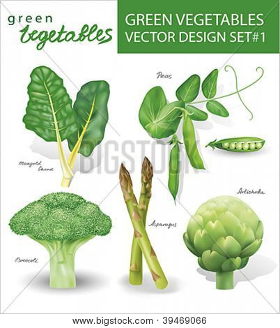 Green vegetables vector design set 1.