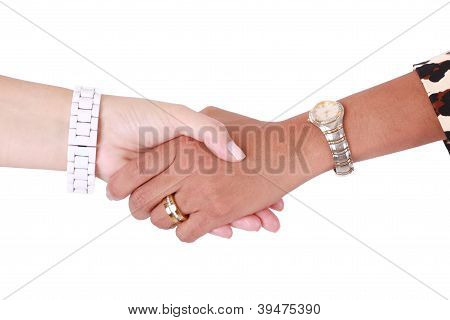Handshake Of Two Multiracial Business Women. Isolated On White Background