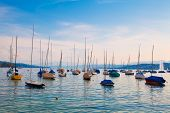 picture of zurich  - Boats moored on Lake Zurich in Switzerland - JPG