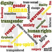 picture of transgendered  - A word based graphic on a transgender theme - JPG