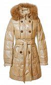 pic of jupe  - women coat isolated on white - JPG