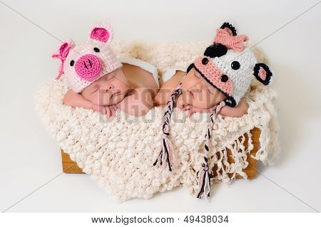 Newborn Twin Girls Wearing Pig And Cow Hats