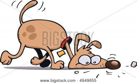 Tracking Dog
