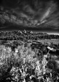 foto of blacktail  - Early summer morning view of the Tetons as seen from Blacktail Ponds Overlook - JPG