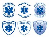 pic of emergency treatment  - Illustration of six emergency paramedic designs with star of life medical symbols - JPG