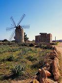 picture of mola  - Windmill in el Pilar de la Mola on the island Formentera Balearic Islands Spain - JPG