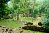 stock photo of mayan  - ancient mayan temple ruins - copan ruinas or copan ruins in Honduras