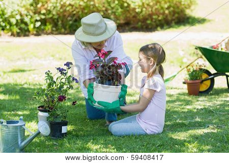 View of a grandmother and granddaughter engaged in gardening