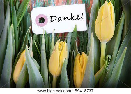 Tulip Background With Danke
