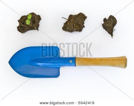 Gardening minimalist