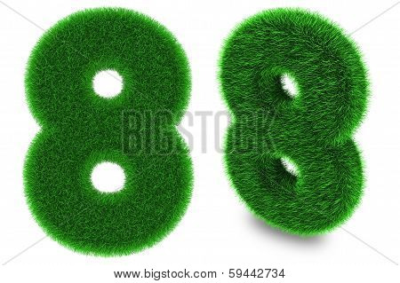 Number Eight Made Of Grass