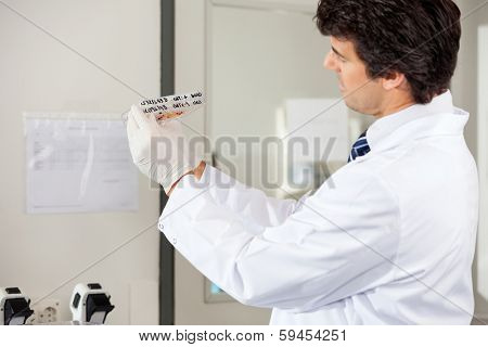 Side view of mid adult male technician analyzing microplate in laboratory