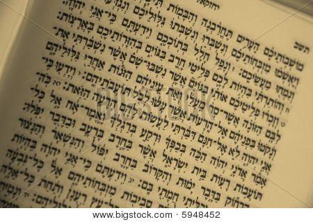 Open Hebrew bible